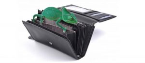 Chemeleon na peněžence
